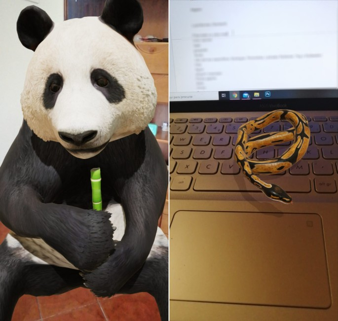 animais 3d do google cobra panda