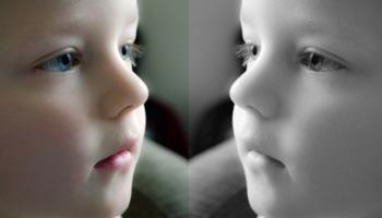5 apps com efeito de espelho para deixar suas fotos mais atrativas