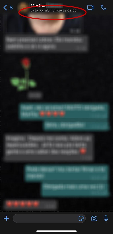 Conversa do WhatsApp com destaque para o recurso Visto por último