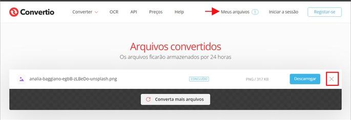 Como excluir arquivo no site Convertio