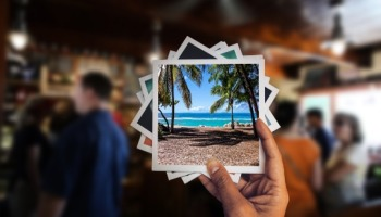 Como desfocar o fundo da foto no Android, iPhone e PC facilmente
