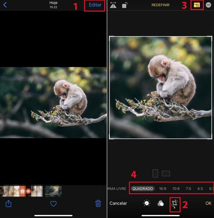 Editor de imagens do iphone