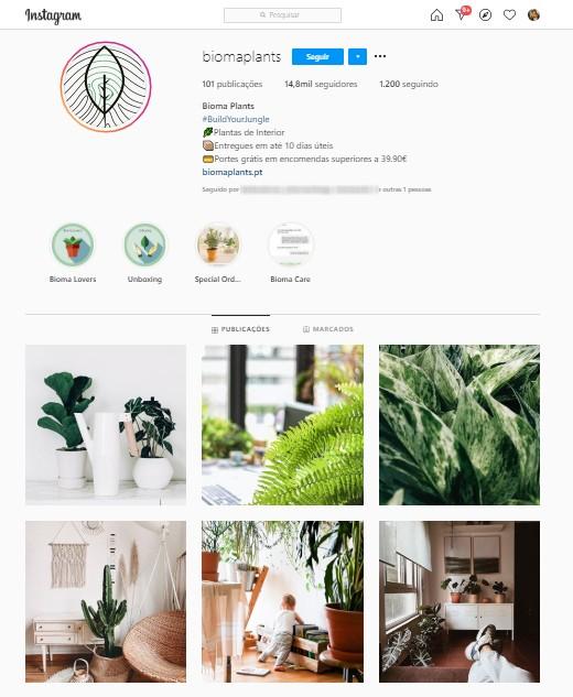 Feed do Instagram de perfil especializado em plantas