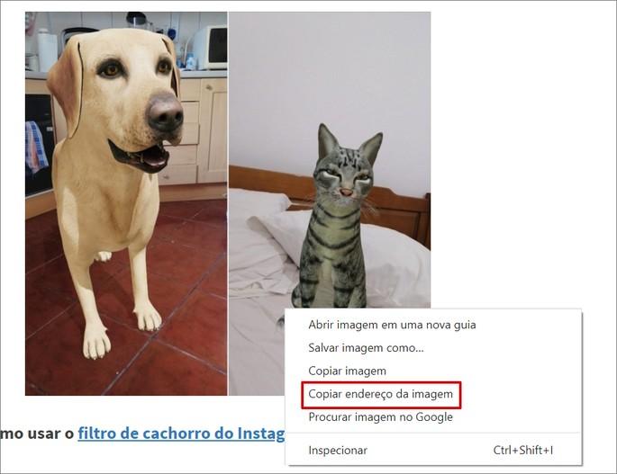 Como copiar link de uma imagem no Chrome