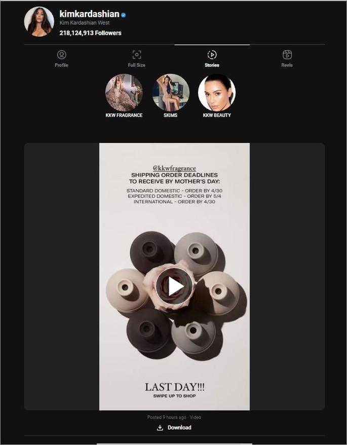 Captura do site que permite ver stories anonimamente instadp