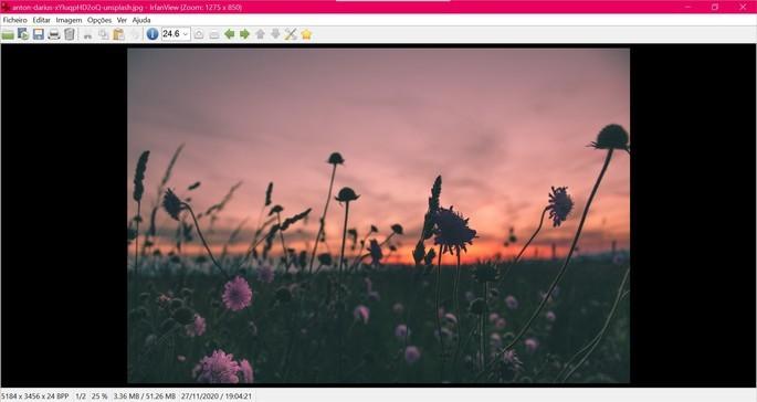 Captura de tela do visualizador de fotos IrfanView