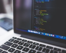 O que é software? Entenda qual é sua função e os tipos existentes