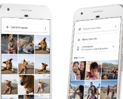 Como recuperar fotos apagadas no Google Fotos