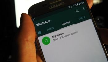 Confira como silenciar o Status de um contato no WhatsApp