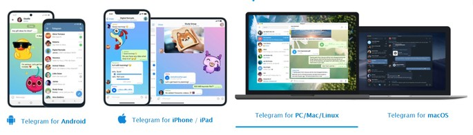 telegram ou whatsapp