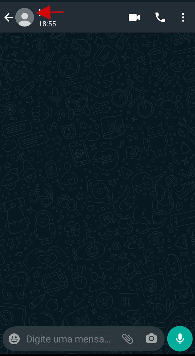 Captura de tela de janela de bate-papo do WhatsApp sem foto do contato