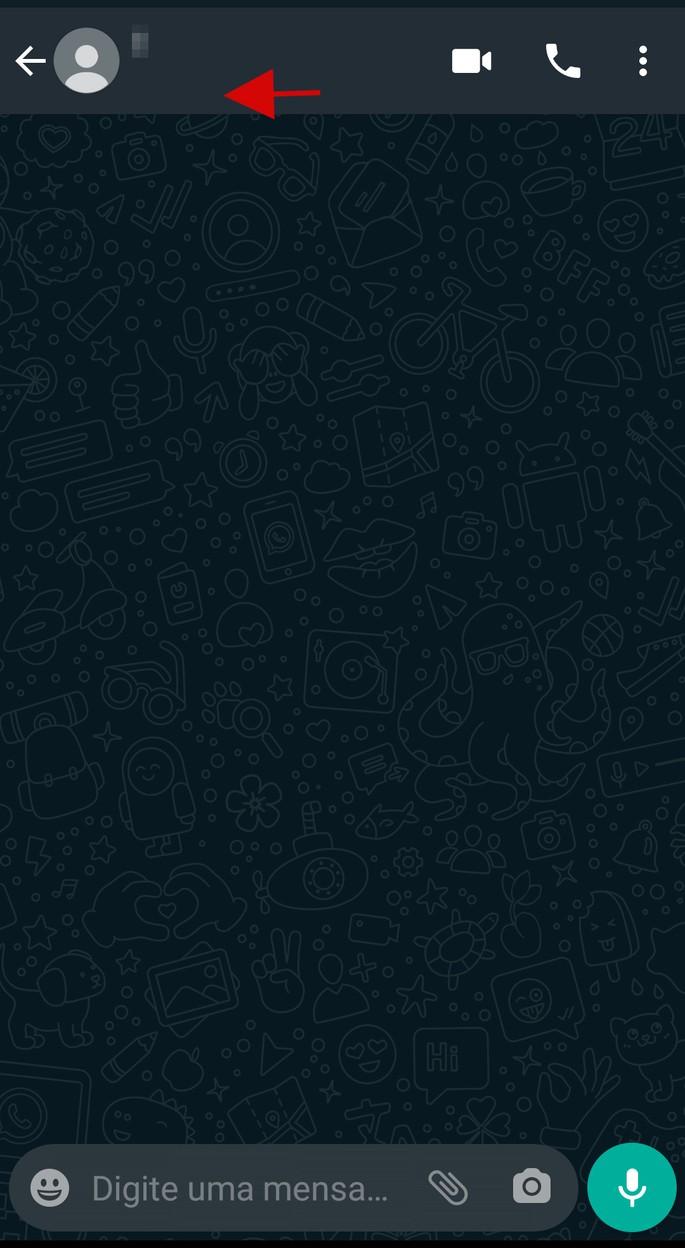 Janela de bate-papo do WhatsApp sem foto e sem a informação de Visto por último
