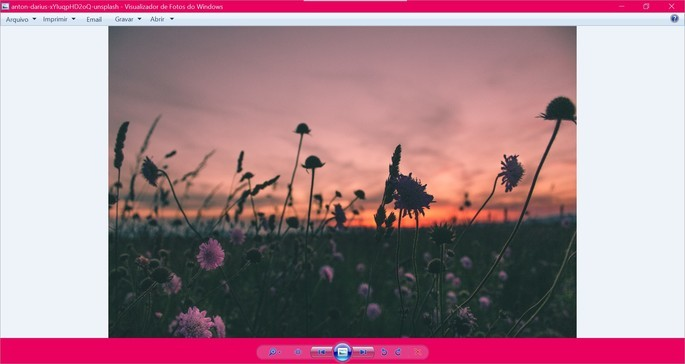 Captura de tela do visualizador de fotos do programa Winaero Tweaker