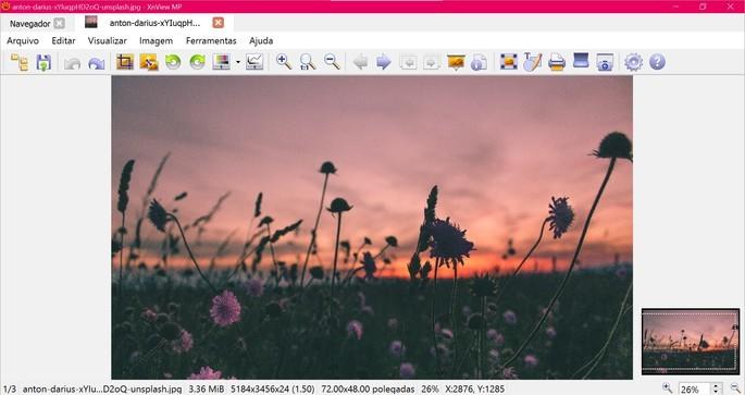 Captura de tela do visualizador de fotos XnView