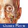 Imagem do aplicativo Human Anatomy Atlas – 3D Anatomical Model of the Human Body